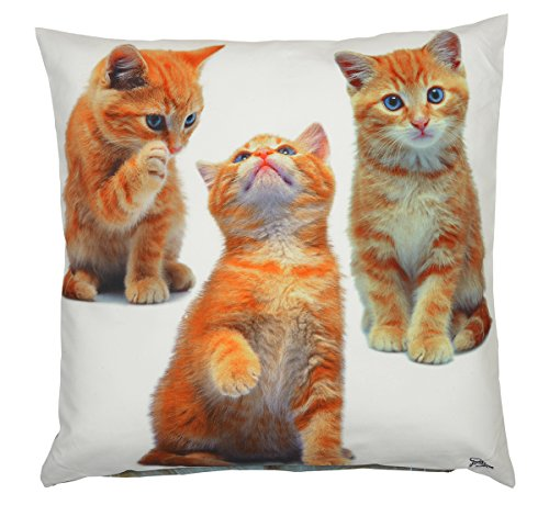 Decoratief kussen, sierkussen, bekleding, kussensloop, 3 katten, kerstcadeau, cadeau voor Kerstmis, kattenkussen, knuffelkussen
