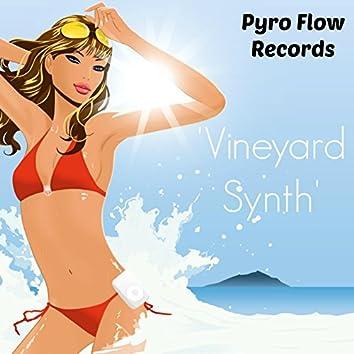 Vineyard Synth (feat. Boydem)