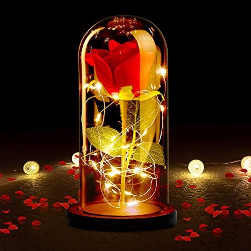 RANJIMA Kit de Rosas, Rosa Eterna La Bella y la Bestia Rose, Red Silk Rose en Dome Glass con Base Pino Luces LED para Cumpleaños Regalo, San Valentín, Aniversario, Regalos de Boda, Romántica Regalo