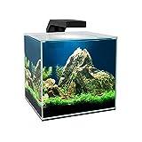 Ciano Acquario Cube 5 LED