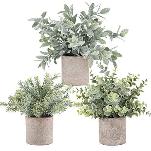 Kyrieval Klein Kunstpflanze im Topf Künstliche Pflanzen Eukalyptus Rosmarin für Haus Badezimmer Büro Deko 3er Set