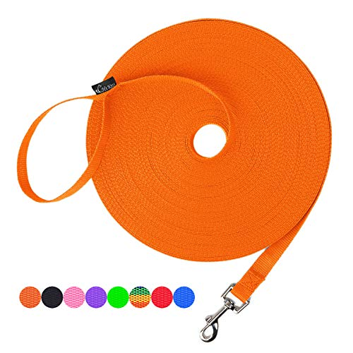 Hi Kiss Dog/Puppy Obedience Recall Training Agility Lead - 15ft 20ft 30ft 50ft 100ft Training Leash - Great for Training, Play, Camping, or Backyard - Orange 20ft