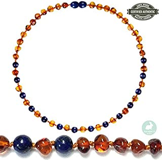 Best finding baltic amber Reviews