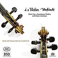Various: Music for 2 Scordatur
