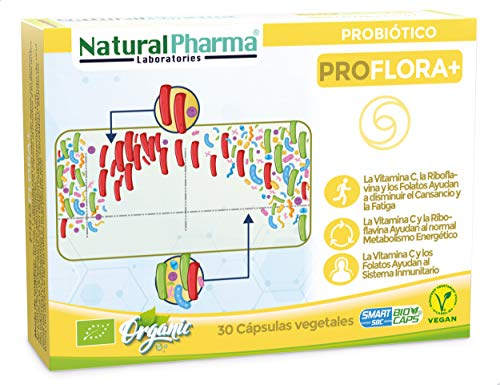 RECUPERA TUS DEFENSAS TRAS LA TOMA DE ANTIBIÓTICOS. ProFlora+ es un probiótico con CERTIFICACIÓN ECOLÓGICA formulado con una variedad de cepas específicas, vitamina C, folatos y vitamina B2. ProFlora+ es la solución definitiva para regenerar la flora...