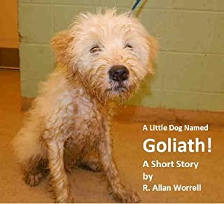A Little Dog Named Goliath!: A Short Story
