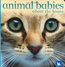 Animal Babies: About the House