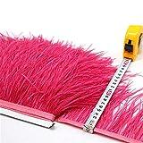 Selene - Franja de ribete de plumas de avestruz de calidad para manualidades y vestidos, Melón de agua, 2 m