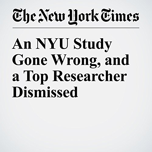 An NYU Study Gone Wrong, and a Top Researcher Dismissed cover art