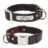 Didog - Collier de chien avec plaque d'identification à graver personnalisable - Collier uni, en cuir véritable doux pour chiens de taille petite à moyenne