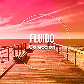 # 1 Album: Fluido Colección