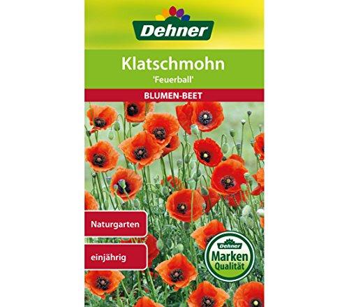 Dehner Blumen-Saatgut, Klatschmohn,