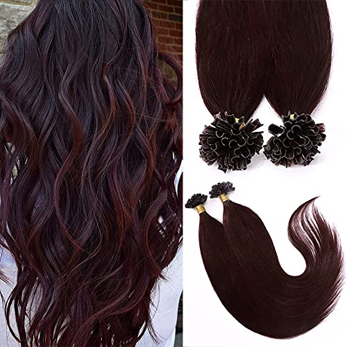 18'(45cm) SEGO Extensiones Queratina Pelo Natural sin Clip [0.5g*100 Mechas] #99J Vino Rojo U Tip Keratina Cabello Humano Balayage Remy Human Hair (50g)