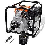 Festnight Pompa d'Acqua con Motore a Benzina/Pompa di filtrazione 80 mm Collegamento 6,5 HP