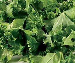 rape kale