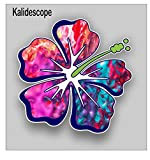 Vinyl Junkie Graphics Hibiscus Flower Sticker/Decal (kalidescope)