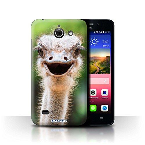 Hülle Für Huawei Ascend Y550 LTE Wilde Tiere Strauß/Emu Design Transparent Ultra Dünn Klar Hart Schutz Handyhülle Hülle