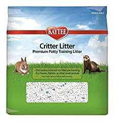 Is Cat Litter Safe For Rabbits? What're The Dangers? 3