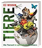 Wissen. Tiere: Die Tierwelt in spektakulären Bildern (DK Wissen)