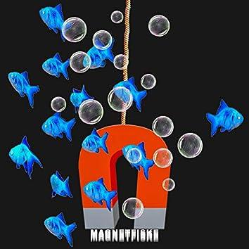 Magnetfiske