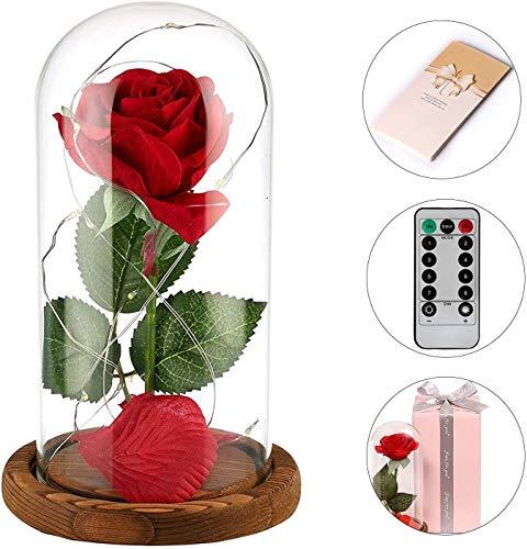 Anaoo Rosso in Cupola Vetro Rose La Bella e la Bestia Rosa di Seta Artificiale Regalo per Il Giorno di San Valentino Compleanno Anniversario Matrimonio Regalo di Festa della Mamma