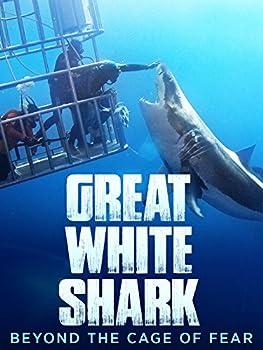 Best sharks eating mermaids Reviews