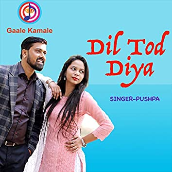 Dil Tod Diya
