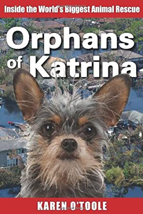 Orphans of Katrina