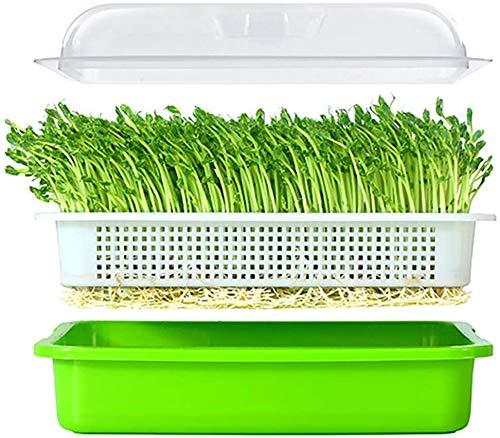 Fagioli Mung per la germinazione, Seme Sprouter Vassoio con coperchio BPA Germoglio di fagioli Grower Germinazione Kit Wheatgrass Grower