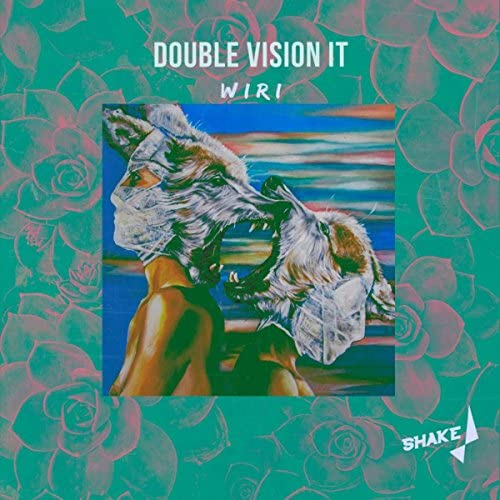 Double Vision IT