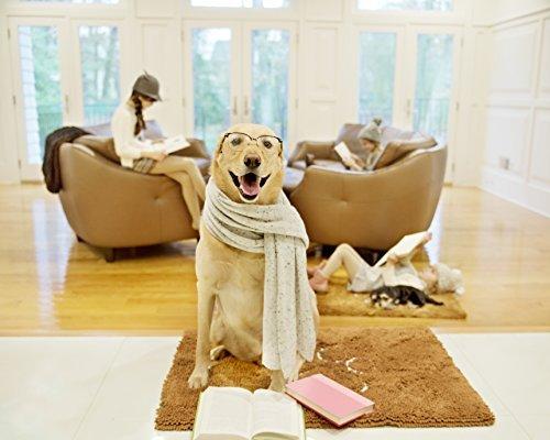 Petfiniti Dirty Dog Doormat Medium Runner Keeps House Clean-Tough,Durable and Absorbent Mat Quick...
