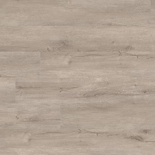 M S International AMZ-LVT-0006P Katalina Sandune 6 inch x 48 inch Gluedown Adhesive Luxury Vinyl Plank Flooring for Pro and DIY Installation (70 Cases / 2520 sq. ft. / Pallet), Gray, Square Feet