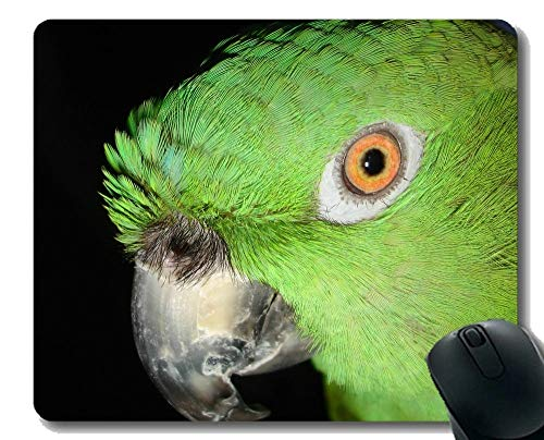 YENDOSTEEN Non-Slip Rubber Gaming Mouse Pad,Eagle Bird Animal Bird of Prey Wildlife Predator Mouse Pads