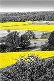 YWOHP Estilo Europeo fotografía Paisaje Cartel nórdico Lienzo Pintura Mural Imagen decoración Pintura Sala de Estar Dormitorio decoración 70X100cm_Unframed_DM528-17