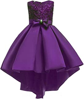 Little/Big Girls Pleated Beaded High-Low Applique Embroidered Flower Girl Pageant Dance Party Dress