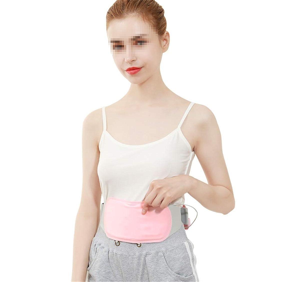 天皇ベーコン対角線ポータブルヒーターパッド用月経痛腰胃の痛みを軽減するウエストベルト4ヒート??セッティングを温めます 腰痛保護バンド (色 : ピンク, サイズ : Free size)