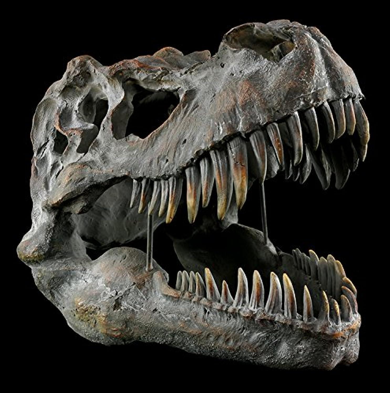 Tyrannosaurus Rex Totenkopf - gro - Deko Figur Wandrelief