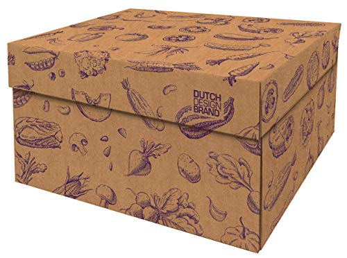 Cajas de almacenamiento decorativas con tapa – Tamaño: 38,9 x 31,8 x 21,1 cm – Cajas de almacenamiento con tapa – Cartón reciclable certificado FSC (impresión vegetal)