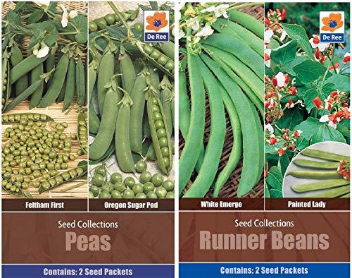 Portal Cool Runner Bean Twin Pack De Ree Graines Pois 2 en Haricots 1 Graines Jardin Pack et extérieur