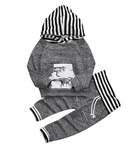 Toddler Infant Baby Boys Dinosaur Long Sleeve Hoodie Tops Sweatsuit Pants Outfit...