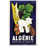 zkpzk Afrika Reise Poster Algerien Klassische Wandkunst