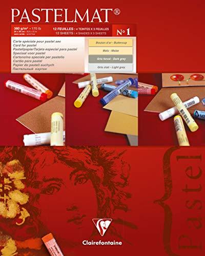 Clairefontaine 96017C - Un bloc encollé papier Pastelmat 12 feuilles 24x30 cm 360g couleurs assorties (Maïs, Bouton d'or, Gris foncé et Gris clair)