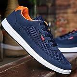 WangKuanHome Zapatos de Lona Transpirables de Verano Zapatos de Tendencia de los Hombres Zapatos de Lona Ocasionales Salvajes de los Hombres Zapatos de los Hombres (Color : Gray, Size : 42)