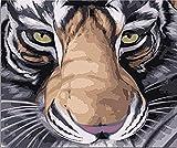 FSKJSZYH Rahmenlose DIY Aquarell Tiere Tiger Ölgemälde by Zahlen Abstrakte Tiger Färbung by...