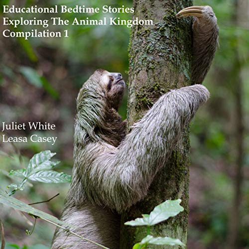 Educational Bedtime Stories - Exploring The Animal Kingdom - Compilation 1 audiobook cover art