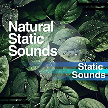 Natural Static Sounds