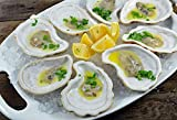 Jefferson Street - Ceramic Oyster Shells for Grilling Baking Cooking -12 Pack - Beautiful, Real Oyster Shell Look- Durable Stoneware Clay and Glaze - Reusable and Easy to Clean - Handmade in USA