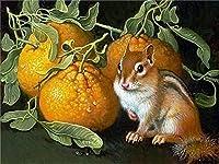 Rui-SyダイヤモンドペインティングキットダイヤモンドスクエアペインティングDiy5Dフルダイヤモンドアート大人の子供用クリスタルクラフト、家族の寝室の壁の装飾ギフトに使用 リスオレンジ