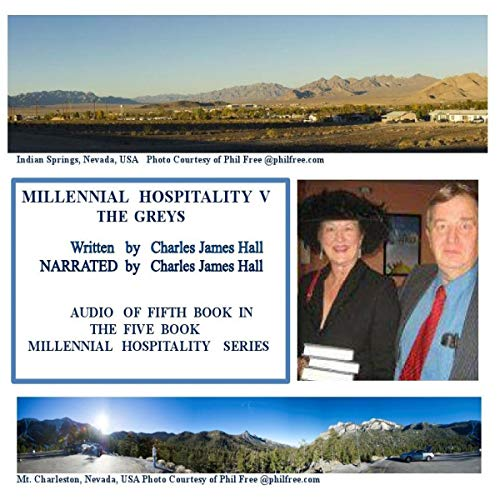 Millennial Hospitality V: The Greys audiobook cover art