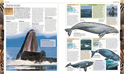 Tiere: Die große Bild-Enzyklopädie mit über 2.000 Arten - 5